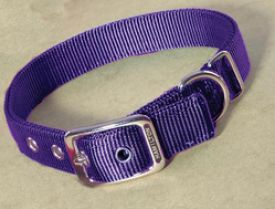 image of Hamilton Double Thick Nylon Dog Collar Purple 22 Inch