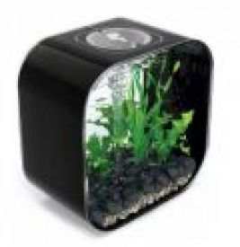 Biorb Life 30 Coldwater Black