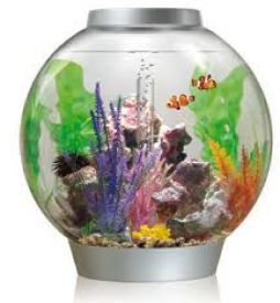 Biorb Marine Aquariums