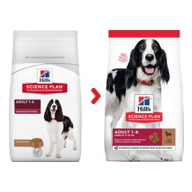Hill's Science Plan Medium Adult Dog Food With Lamb & Rice